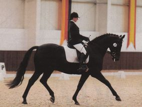Beth Barnett riding Sheepcote Rolex