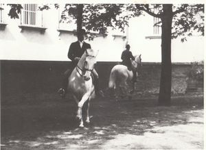 David Pincus riding at the Spanish Riding School