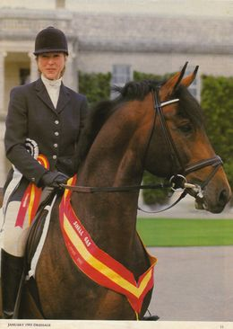 Serena Pincus riding Cassander, British Dressage National Champion