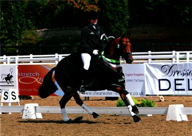 Lucy Pincus riding Sheepcote Sandmartin.