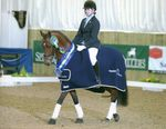 Lucy wins Petplan Novice Restricted Area Festival Championship